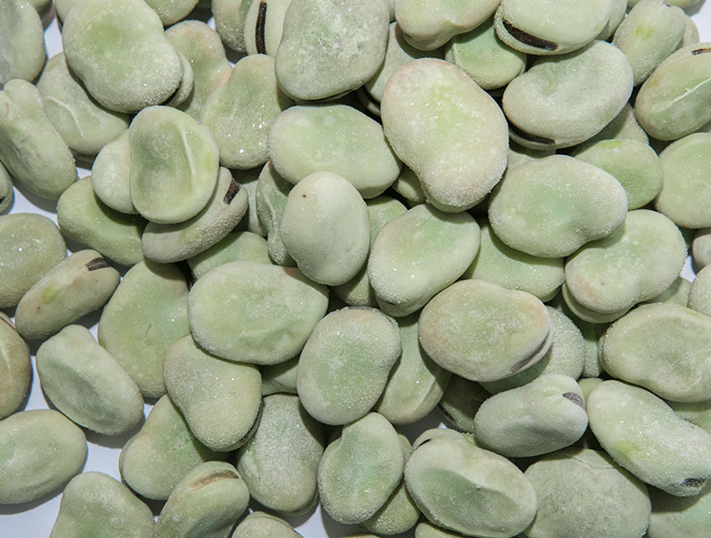 The benefits of eating broad beans